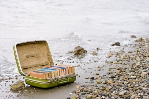 valises-de-livres2 (1)